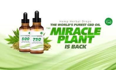Top 10 Least Expensive Network Marketing CBD Oil Companies