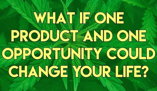 Submit CBD Guest Post